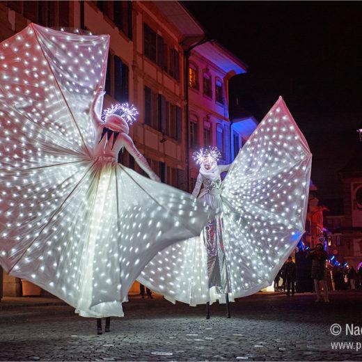 Licht-Festival Murten. L'éveil du printemps